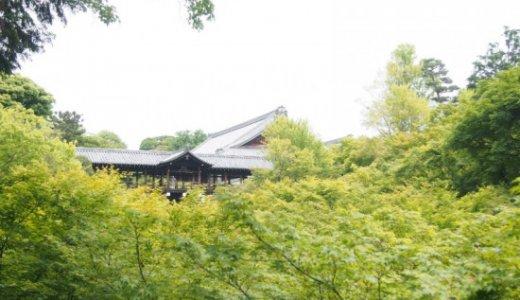 紅葉だけじゃない!東福寺に行ってみたくなる4つの理由