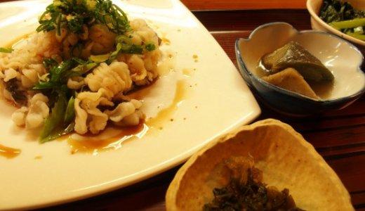 京都の定番夏グルメ・鱧の秘密と「松いち」の鱧ランチ