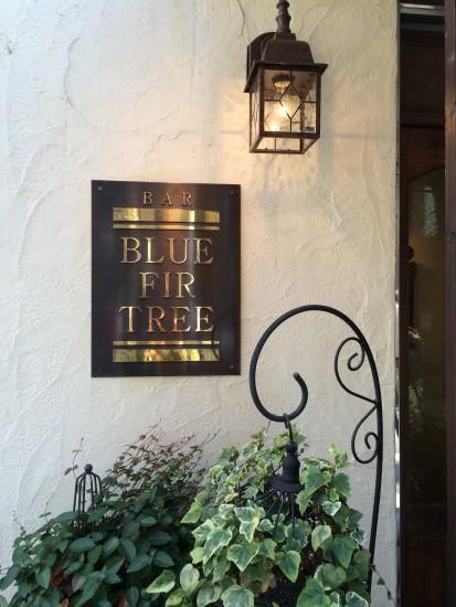 20131030Blue Fir Tree