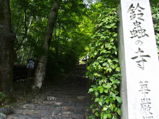 境内へと続くこの階段はゆっくり新緑を楽しみつつ数えながら登ってみましょう(^0^)「極楽へ続く」段数といわれる80段ぴったりありますよ。