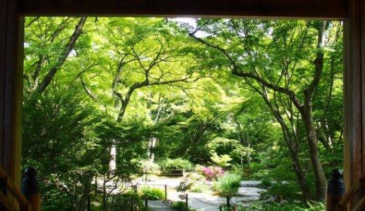 観光客が賑やかな嵐山にある静かな寺院:宝筺院