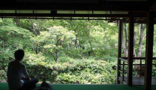 心洗われる竹林の空間:直指庵