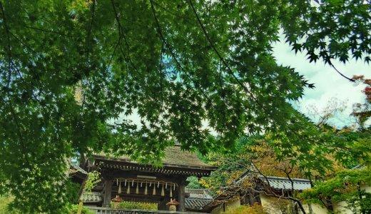 山科駅の北側に位置する、正式名称が「出雲路」の門跡寺院とは?