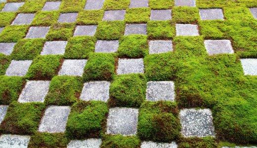 モダンなお庭。東福寺 方丈庭園