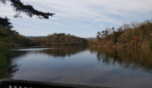 深緑のシーズン到来!少し足を伸ばして行ってみたい池特集!①宝ヶ池