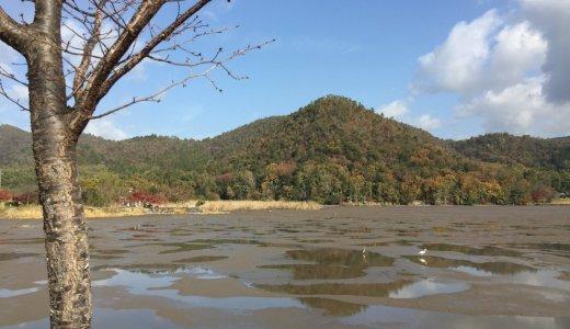 水のない池:広沢池