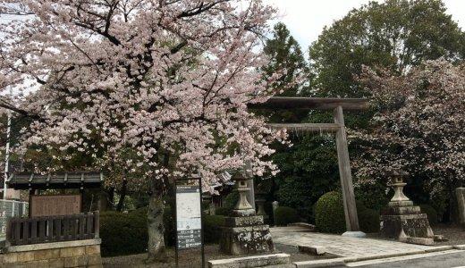 桜も楽しめるパワースポット:太秦 蚕ノ社(木嶋神社)