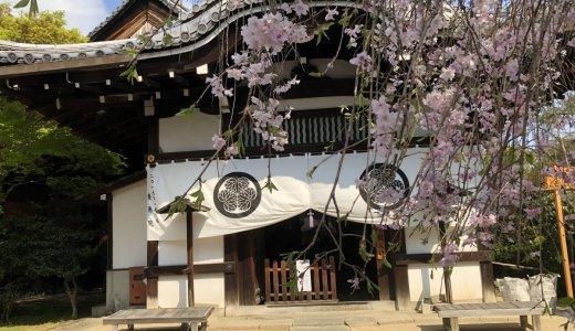 血天井と俵屋宗達の襖で有名なお寺:養源院