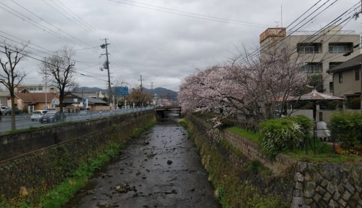 太秦・嵐山方面道中の楽しみに!:天神川