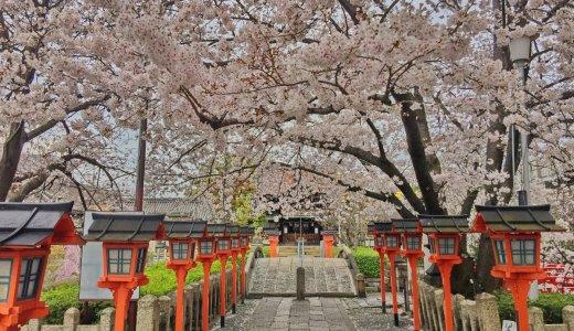 [2020年4月2日更新]京都の桜情報