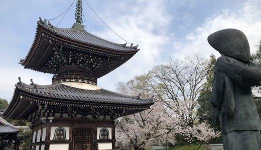 京都の芸術家とゆかりのあるお寺:本山 本法寺