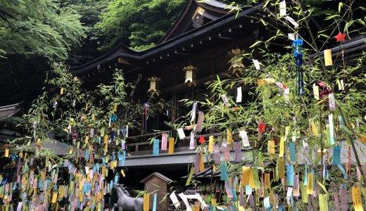七夕笹飾りと二輪守:貴船神社