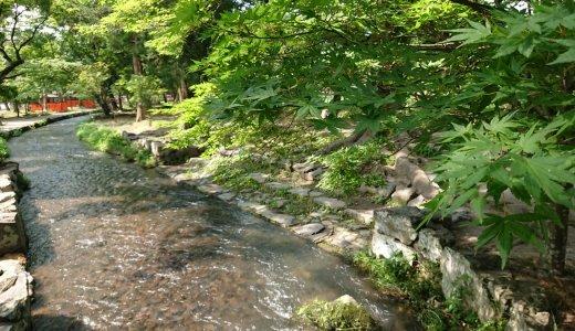 上賀茂神社で「涼」を感じる