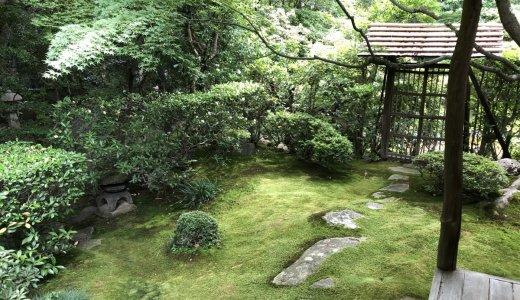 落ち着いた空間で新緑を…:桂春院