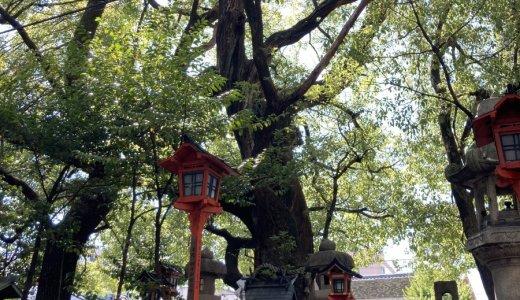 座敷童と平清盛別邸跡:若一神社