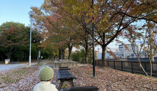 【梅小路公園】紅葉と電車を楽しめる!