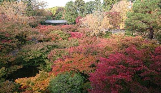 紅葉の名所【東福寺】