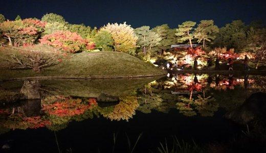 【秋のライトアップ 】知恩院と梅小路公園