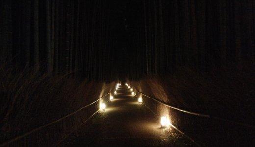 暗いめの竹林の道も趣深い!(嵐山花灯路・西京区)
